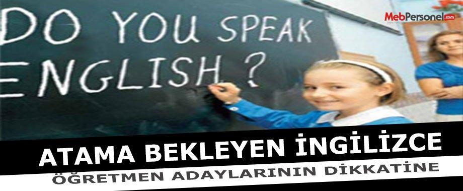 İngilizce Öğretmenliği Branş Kontenjan Analizi İçin Bize Yazın