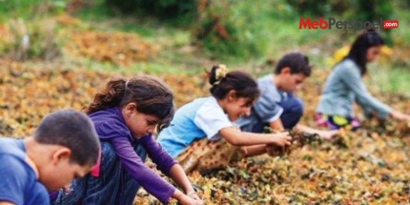 Tarım işçisi çocuklara mobil okul kurulacak