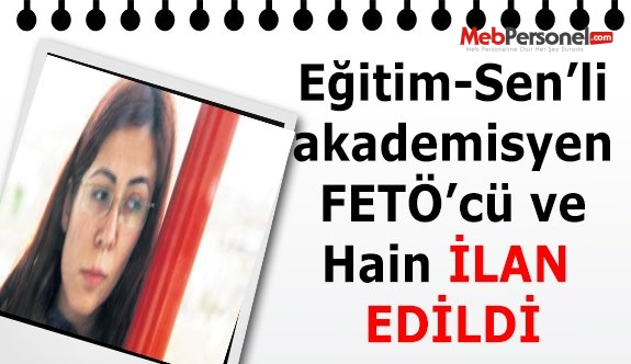 Eğitim-Sen'li akademisyen FETÖ'cü ve hain ilan edildi