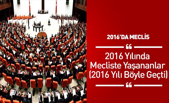 2016 Yılında Mecliste Yaşananlar (2016 Yılı Böyle Geçti)