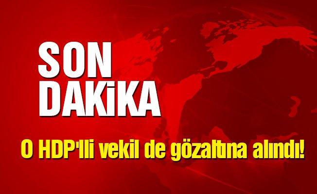 O HDP'lli vekil de gözaltına alındı!