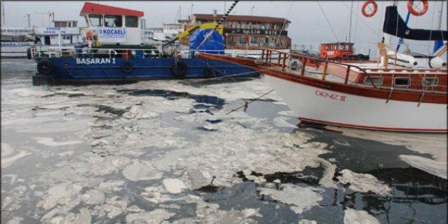 TÜBİTAK denizlerdeki kirliliği mercek altına aldı