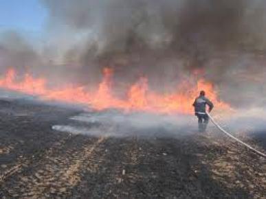 Adana, anızdan dolayı duman altı oldu