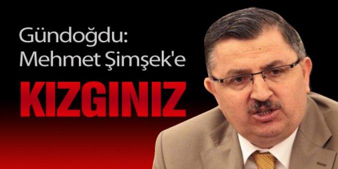 Gündoğdu: Mehmet Şimşek'e kızgınız