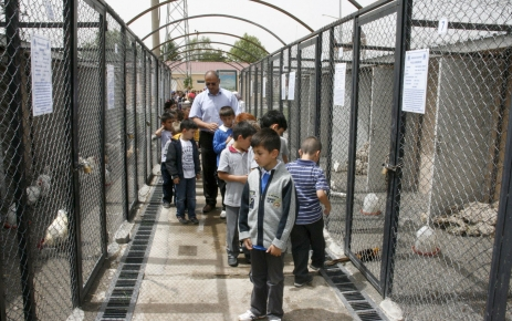 Hayvan parkına çocuklar ilgi gösteriyor