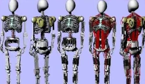 Kas ve iskelet yapımıza en çok benzeyen robot geliştirildi