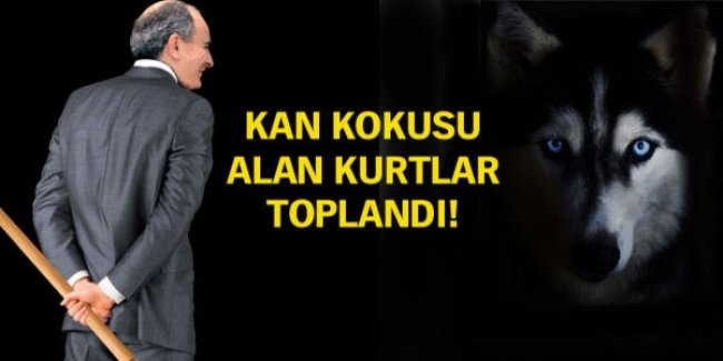 PİYASA İLLAKİ SOPA İSTİYOR!