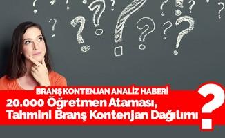 20.000 Öğretmen Ataması, Tahmini Branş Kontenjan Dağılımı
