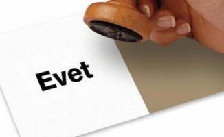 Bazı STK'lar 'referandum' kararını açıkladı