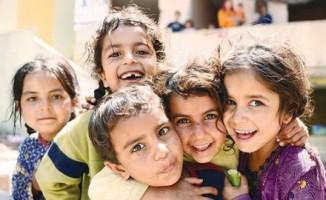 Suriyeli mültecilerin yüzde 74'ü Türk vatandaşlığı istiyor