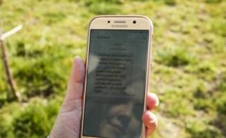 Polis, 81 ilde, dolandırıcınız yakalandı SMS'i atacak