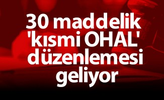 30 maddelik 'kısmi OHAL' düzenlemesi geliyor
