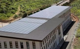 Bu üniversite enerjisini güneşten sağlıyor
