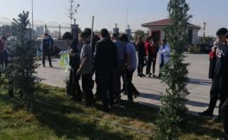 Öğrenciler okullarının bahçesini ağaçlandırdı
