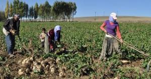 Tarıma yatırım yapana 3 milyon liralık destek