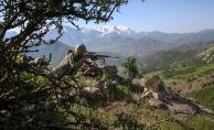 'PKK çözülme sürecine girdi'