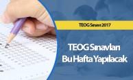 TEOG Sınavları Bu Hafta Yapılacak
