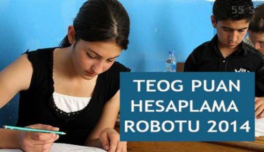 TOEG Puanı Hesaplama 2013-2014 MEB