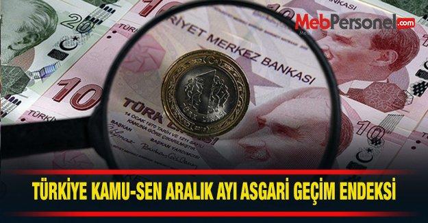 Türkiye Kamu-Sen'in aralık ayı asgari geçim endeksi