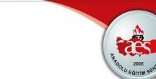 AES, Danıştay#039;daki Alan Değişikliği Davasını Kazandı